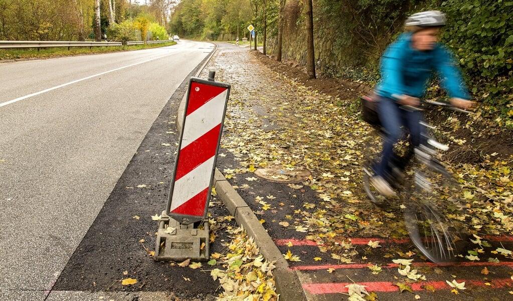 Det skal være sikkert og attraktiv at tage cykel i Flensborg. Trafikkluben VCD i Flensborg har derfor udviklet et forslag til en cykelrutenet. Arkivfoto: Lars Salomonsen  ( )