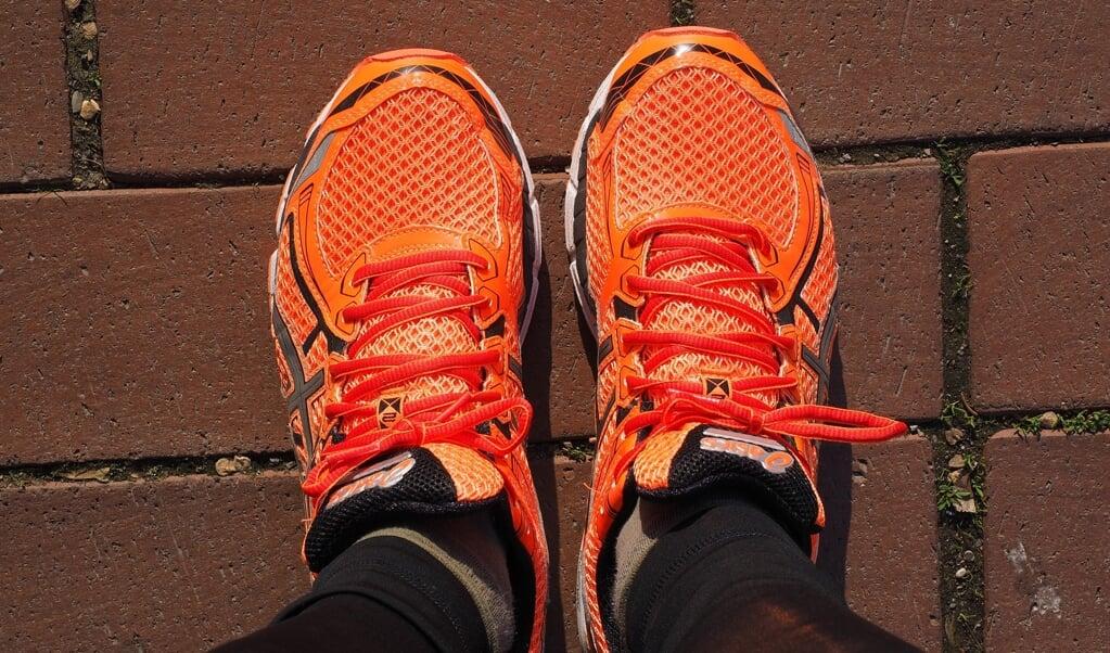 Det gælder i først omgang  om at sætte sig små delmål - dernæst kommer det større arbejde med at finde ud af, hvor skoen i virkeligheden trykker, siden du blokerer for de mål, du sætter dig.   ( Hans Braxmeier, Pixabay)