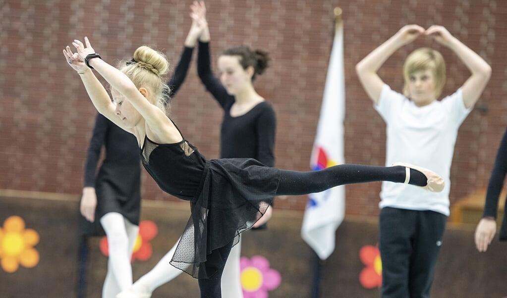 Træningen i Gymnastikforeningen DAN, som kan ses her i SdUs sidste års forårsopvisning, er sat på pause. Men medlemmerne holder fast i klubben.  Tim Riediger  (Tim Riediger / nordpool)