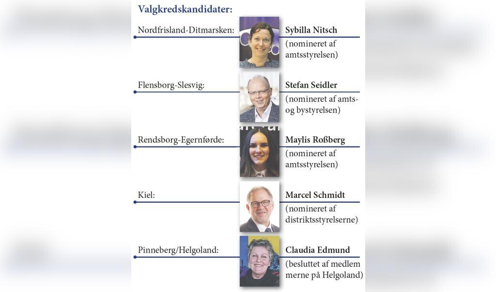 Her er valgkredskandidaterne.  (Illu: SSW)