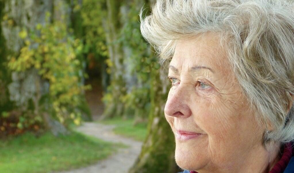 Demens udvikler sig ofte med en snigende hastighed. Demensforeningerne i Slesvig oplever derfor oftere og oftere, at ældre går tur i skoven eller køber ind i butikkerne og pludseligt kigger forvirret omkring uden at vide, hvor de er. Med et nyt tiltag håber foreningerne, at borgerne bliver bedre til at hjælp de ældre.   ( Pixabay)