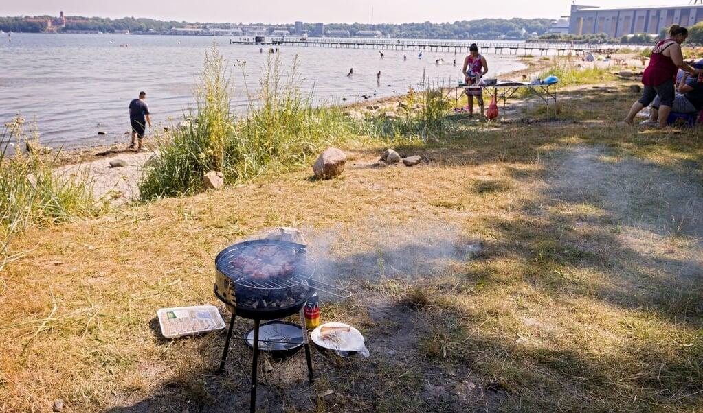 <p>I stedet for grillning direkte p&aring; stranden &oslash;nsker SPD, at der &nbsp;blandt andet skal v&aelig;re faste grillpladser for at g&oslash;re det mere sikkert at f&aelig;rdes p&aring; stranden. Arkivfoto: Lars Salomonsen.</p>  (Lars Salomonsen)
