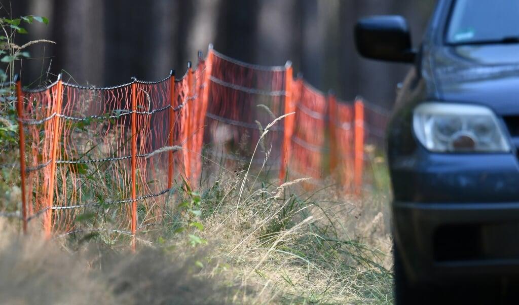 <p>Findestedet er blevet indhegnet med et 12 kilometer langt, elektrisk hegn.</p>  ( Bernd Settnik/dpa-Zentralbid/dpa.)