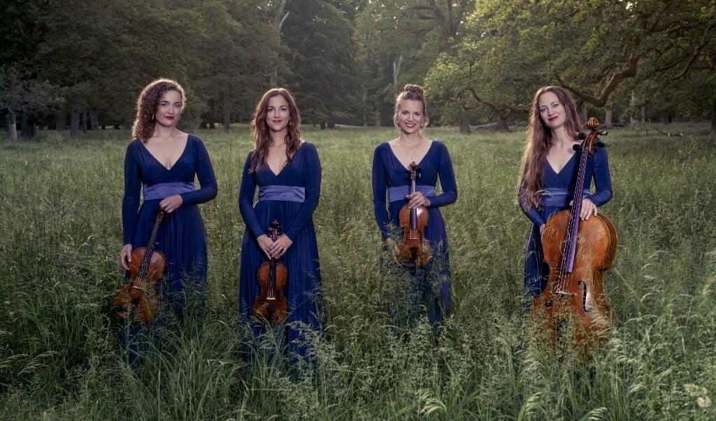 Det prisbelønnede danske ensemble Nightingale String Quartet er gået i gang med at indspille samtlige Vagn Holmboes strygekvartetter.    (Julia Severinsen)