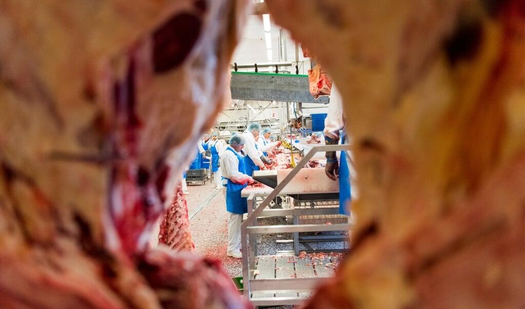 Torsdag vender medarbejderne tilbage til Danish Crown. Myndighederne har givet tilladelse til, at slagteriet kan genåbne, efter at smitten er kommet under kontrol.   (Arkivfoto: Martin Ziemer)