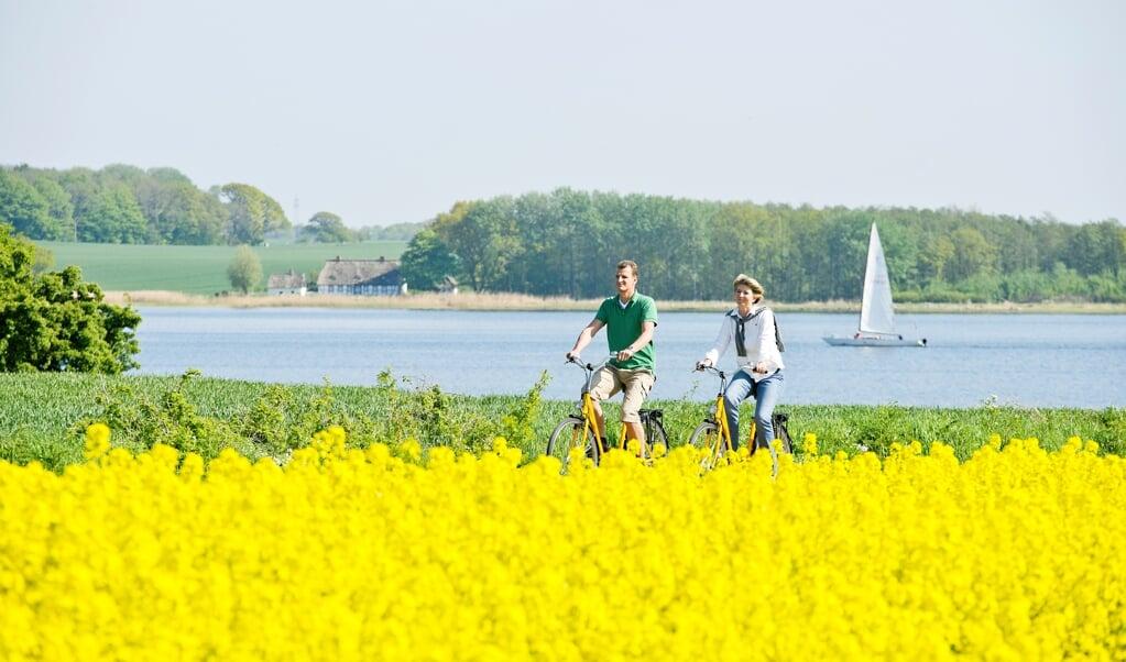 Viele der in der Schleiregion beheimateten Touristik-Betriebe wollen sich an dem Modellprojekt beteiligen. Die Nachfrage von Touristen ist groß. Archivfoto:  (Ostseefjord Schlei (OfS))