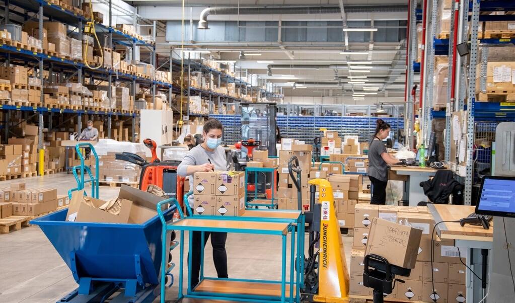 Der er gang i den i internetbutikken Cocopanda i Flensborg, der vil fordoble medarbejdertallet i byen.   (Tim Riediger)