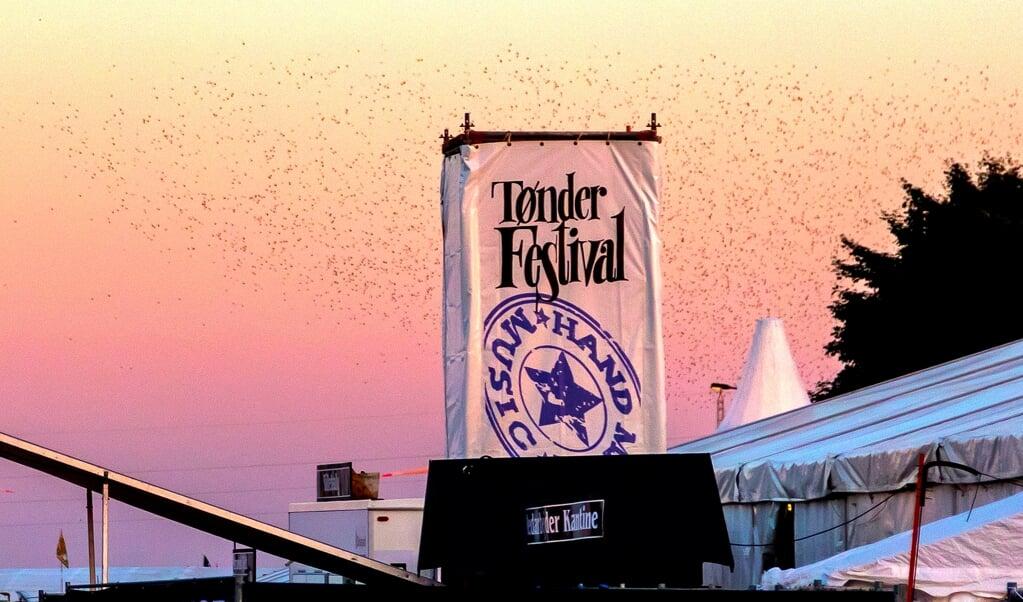 To års aflysninger har også betydning for den Tønder Festival, der møder gæsterne, når musikken igen spiller - måske i 2022.   (Lars Salomonsen)