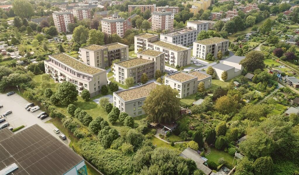 Rund 175 Wohnungen sollen im neuen Wohngebiet Mumm'sche Koppel beim Flensburger Campus entstehen.  (Visualisierung (2019): Architekturbüro Matthias Bleich)