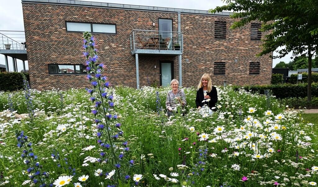 Formidlingshaven har fokus på biodiversitet, bæredygtighed og genbrug af materialer.    (Katrine Lund Walsted, JydskeVestkysten)