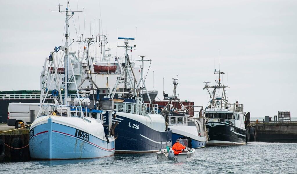 Danmarks Fiskeriforening er positivt stemt over for, at det er lykkes EU at indgå en aftale med Storbritannien om fiskekvoter for 2021. (Arkivfoto)  (Jonathan Nackstrand/Ritzau Scanpix)