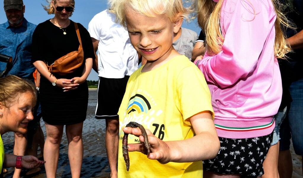 Syvårige Valdemar opdagede, at Vadehavet kan være ret fascinerende.   (André Thorup, JydskeVestkysten)