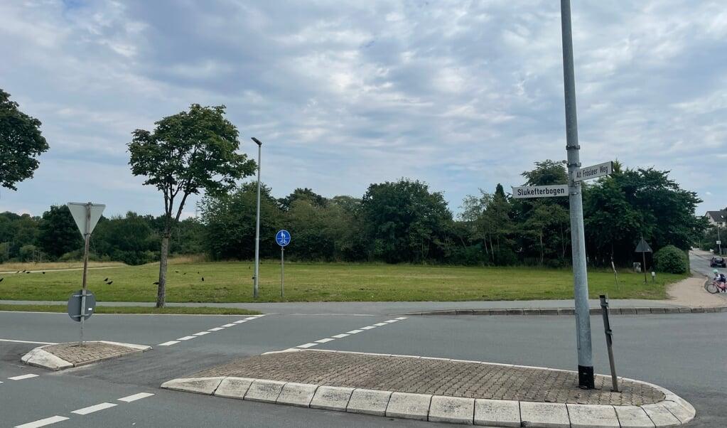 Det er på denne græsplæne, hvor cirkusteltet normalt stilles op, at lokalpolitikerne gerne ser, at den nye svømmehal bliver bygget.  ( Jade Wittenkamp)