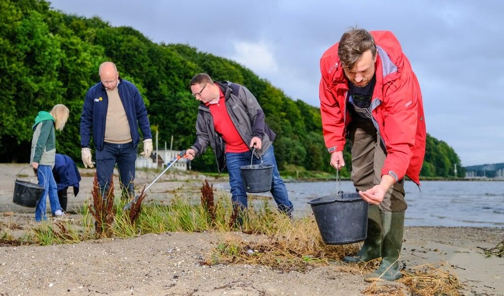 Miljøekspert Steffen Werz og en flok SSWere gjorde rent på stranden Ostseebad lørdag morgen.   (Sven Geißler)