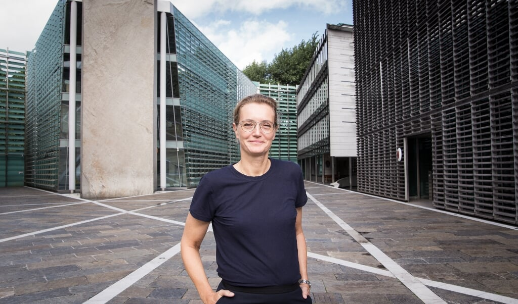 Hvis SSW vælges ind i Forbundsdagen, ser den danske ambassadør i Berlin, Susanne Hyldelund, frem til et godt samarbejde.  ( Kasper Jensen)