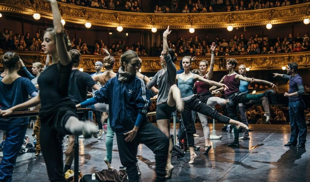 Den Kongelige Ballets morgentræning kan overværes af publikum.  ( Det Kgl. Teater)