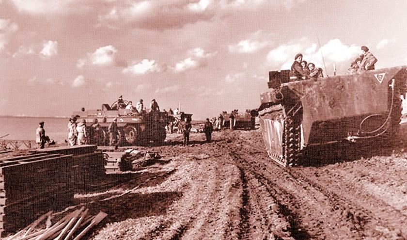 Buffalo's bij de Braakman. Foto Canadian Army