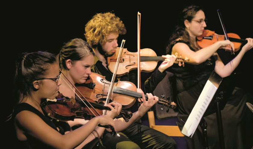 Het Ataneres Ensemble speelt in Westdorpe en Groede. Foto PR