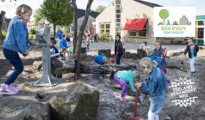 De gemeente Terneuzen kleurt groen. Vorige week is bekend geworden dat er drie basisscholen aanhaken bij de Groene Revolutie Zeeuwse Schoolpleinen.