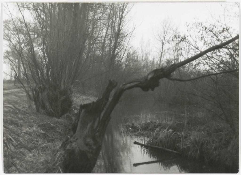 Het Heksenwiel in 1969