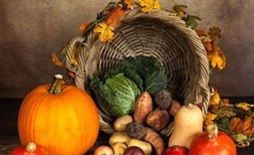 Er is aandacht voor onder meer bodemverzorging, zaaien, verspenen en opkweken van gewassen, indeling van de tuin en wisselteelt.