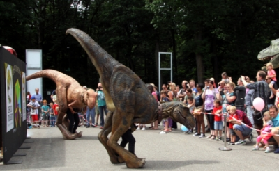 <p>Bij de introductie van de Boxtelse dino-app in 2017 wandelden &#39;levende&#39; dinosaurussen over het terrein bij het Oertijdmuseum. Zo&#39;n replica verwelkomt zondag het publiek tijdens de koopzondag Mode & Beauty in het centrum van Boxtel. (Foto: Gerard Schalkx).&nbsp;</p>