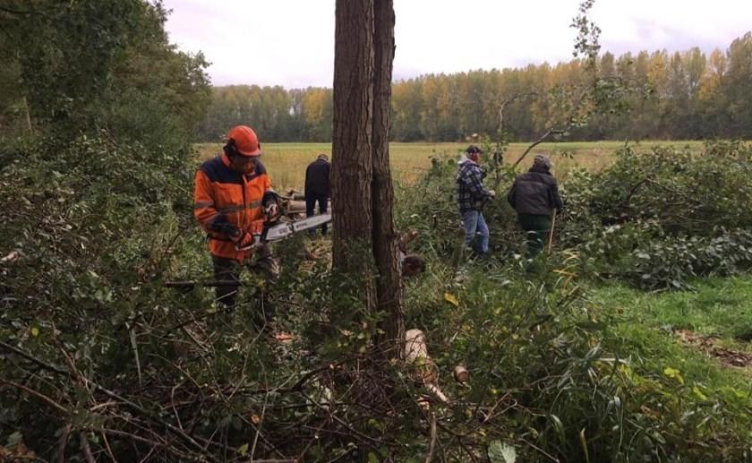 De Natuurwerkdag is een initiatief van koepelorganisatie LandschappenNL.