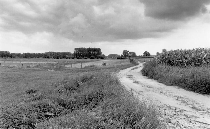 Het fietspad door het Dommeldal van Liempde naar Olland
