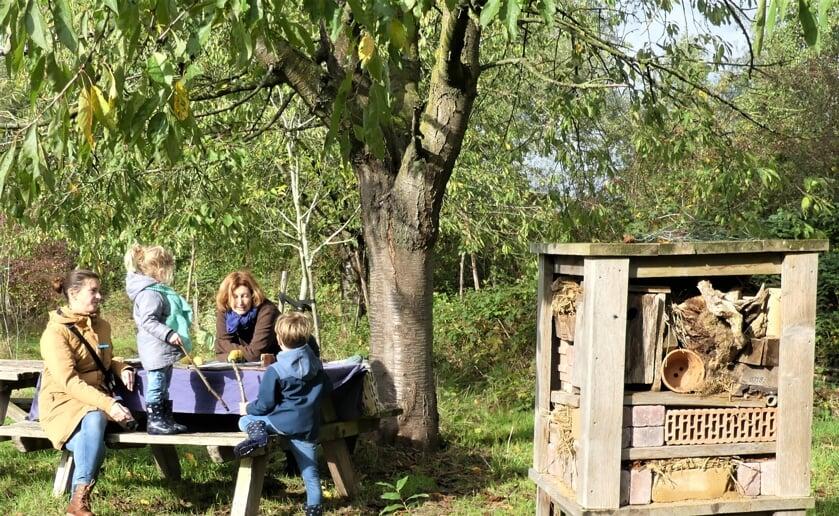 <p>Ecologisch moestuinieren op De Kleine Aarde: met behulp van een professionele imker krijgen deelnemers op het terrein aan het Klaverblad de basis uitgelegd. (Foto: Ad van de Wetering, 2020)</p>