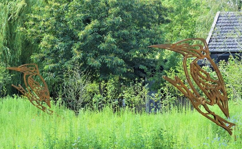 In Boxtel is een klein natuurparkje geopend aan De Burgakker. Foto: Ad van de Wetering
