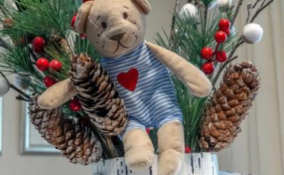 <p>De foto van deze knuffel is gemaakt voor een kerstverhaal uit 2019 over Mari&euml;lle van Beers, die als mantelzorger voor haar dochter Sylvi zorgt.</p>