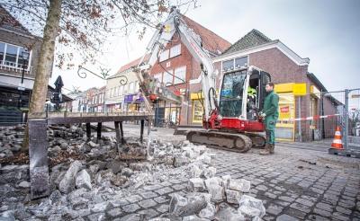 Voordat deze boom verplant kan worden, moet onder andere eerst een deel van de bestrating verwijderd worden. (Foto: Bas van den Biggelaar).