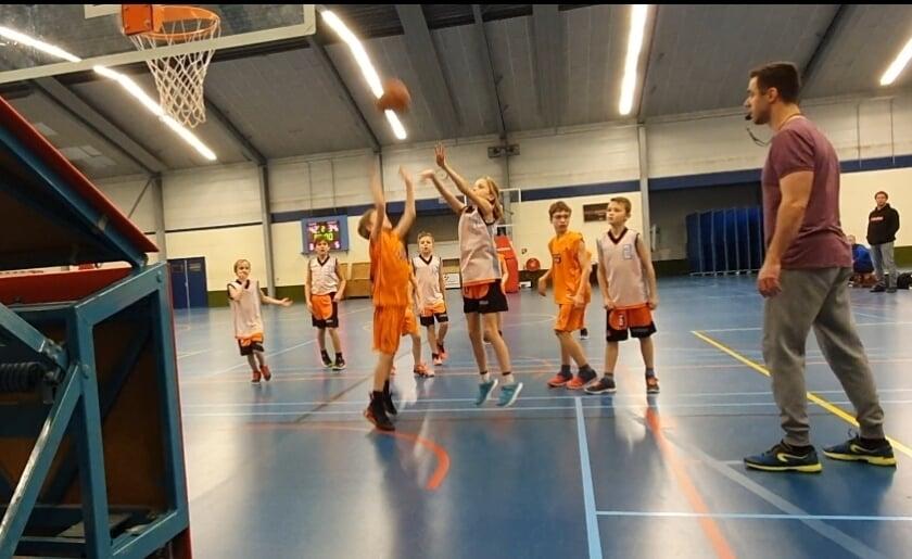 <p>Basketballclub JRC Ducks uit Boxtel is dringend op zoek naar trainers/coaches voor de jeugdteams. In september starten de trainingen weer. (Foto: eigen collectie).</p>