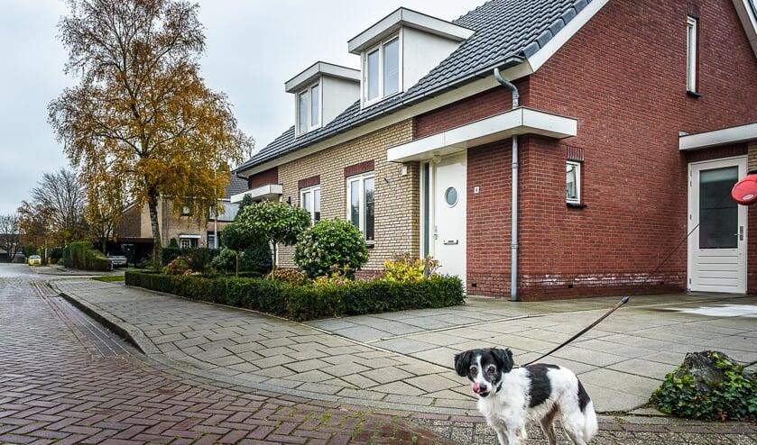 <p>Bestaande huurwoningen van De Kernen in Horssen.</p>
