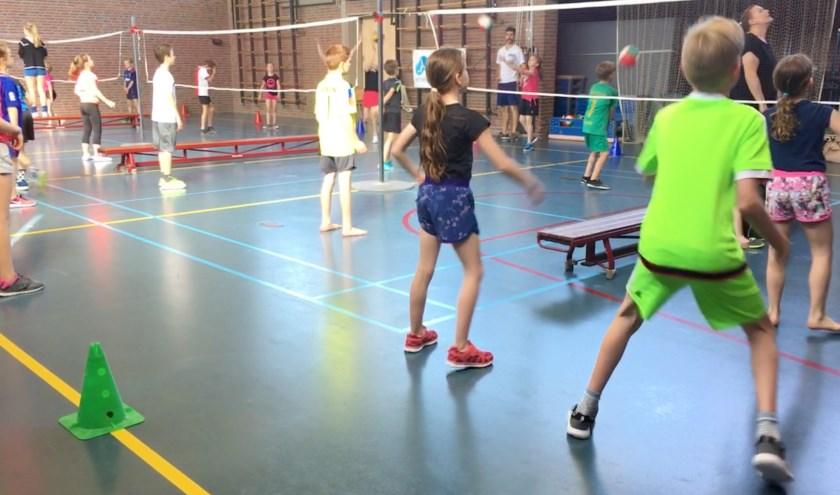 Volleybal op 't Geerke uit Puiflijk