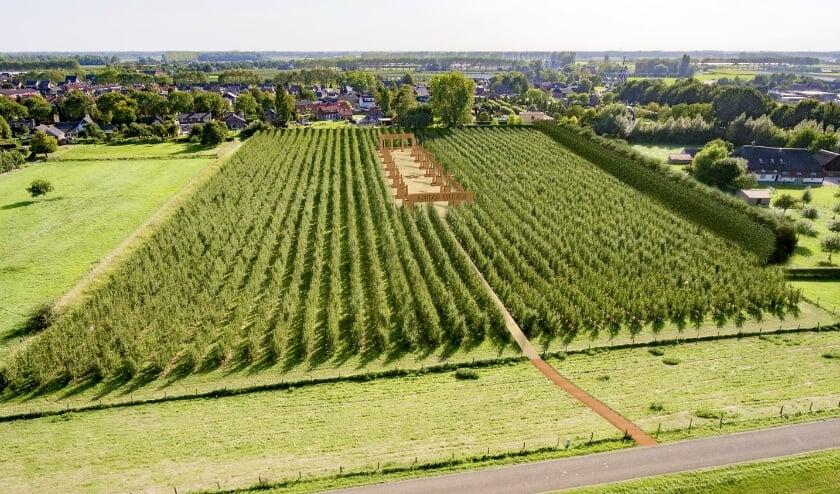 <p>Drone-view vanaf de dijk bij paal 130 in Winssen.</p>