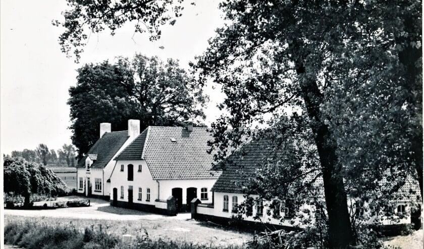 <p>Edenoord, Heersweg anno 1956.</p>