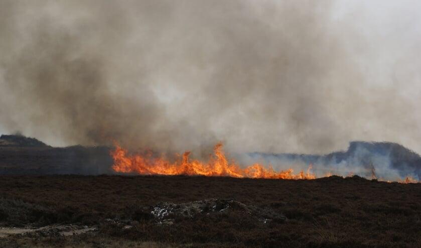 Natuurbrand