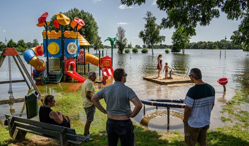 <p>Hoogwater in Maas en Waal</p>