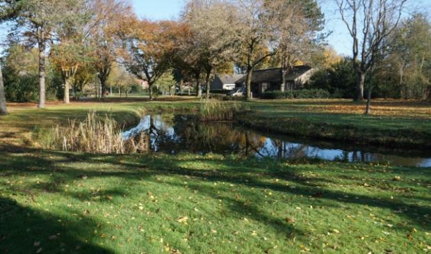 <p>Vijver Jansenpark</p>