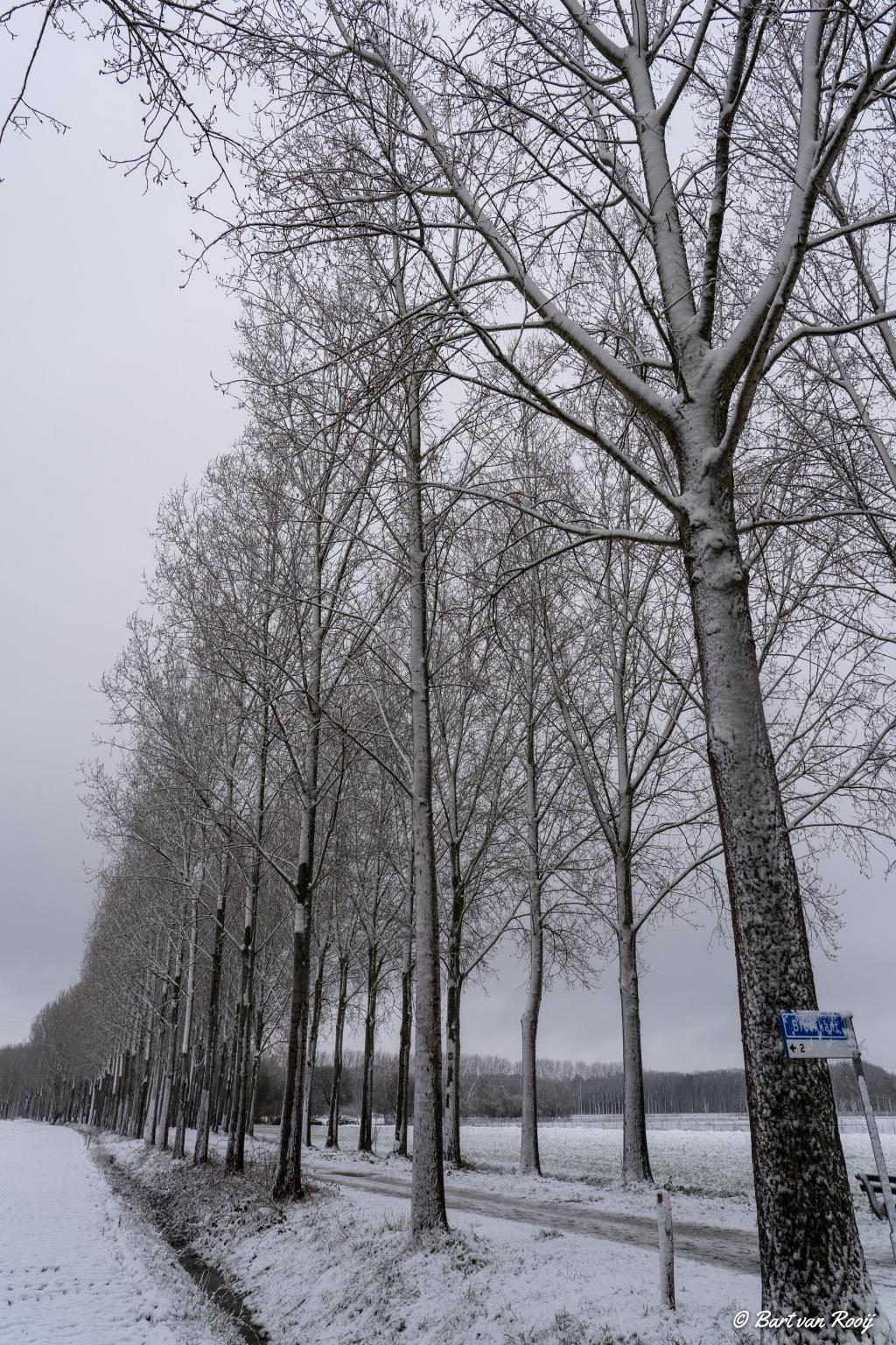 Sneeuw op woensdag 7 april 2021 Bart van Rooij © mooischijndel