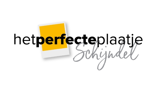 <p>Logo Het Perfecte Plaatje Schijndel</p>