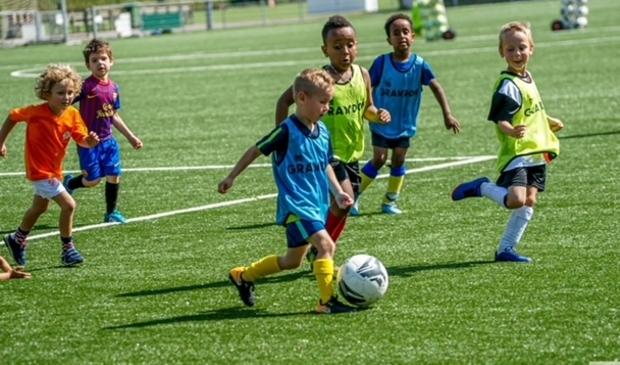 <p>Kaboutervoetbal bij RKSV Schijndel</p>