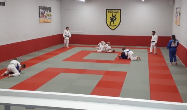 <p>Jonge judoka&rsquo;s trainen voor het eerst sinds december weer op de vertrouwde mat van Budoclub Schijndel onder toeziend oog van hun trainers.</p>