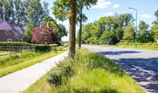 Slecht zicht bij de oversteekplaats Eerdsebaan / Hoeves waar al meerdere ongevallen plaatsvonden.