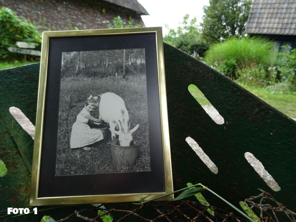 Foto 1 Mimi van Aarle Mimi van Aarle © mooischijndel