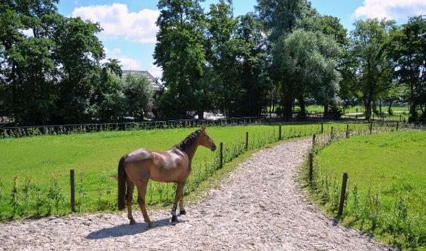 Landgoed Slichtenhorst