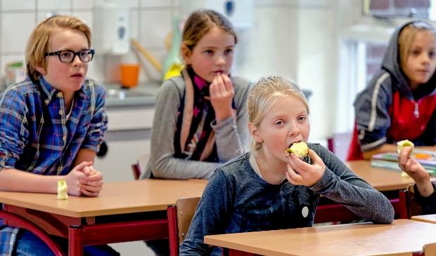 <p>Leerlingen in de groepen vijf tot en met acht op de basisscholen in de regio Nijkerk kunnen zich voorbereiden op &lsquo;voedselonderwijs&rsquo;.</p>