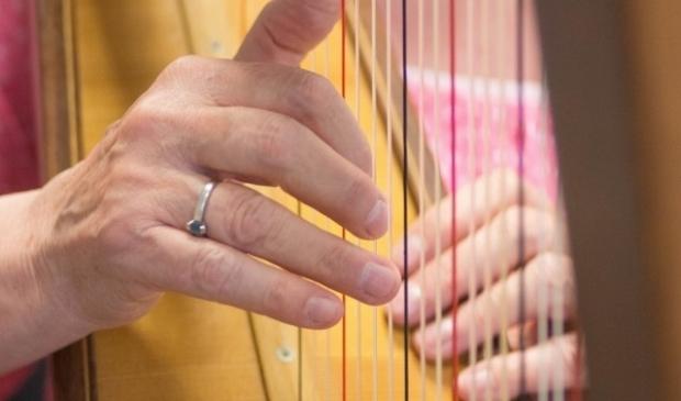 Harples op de muziekschool
