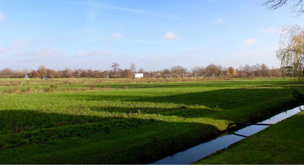 Bouwbedrijf Heijmans wil op het stuk grond, ingeklemd tussen de Maanweg en Van Diepenheim Scheltuslaan, een woonwijk bouwen. Marcel Koch © BDU media